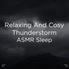 "!!"" Relaxing and Cosy Thunderstorm Asmr Sleep ""!! album lyrics, reviews, download"