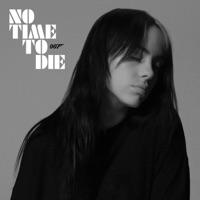 Billie Eilish - No Time To Die Lyrics