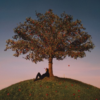 TYRON by Slowthai album reviews, ratings, credits