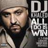 All I Do Is Win (feat. T-Pain, Ludacris, Snoop Dogg & Rick Ross) - Single album lyrics, reviews, download