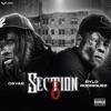Section 8 (feat. Rylo Rodriguez) - Single album lyrics, reviews, download