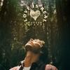 Love Is Real - Single album lyrics, reviews, download