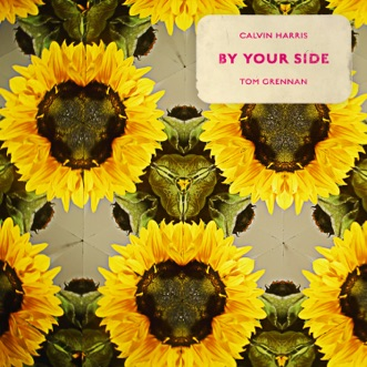 By Your Side (feat. Tom Grennan) by Calvin Harris song lyrics, reviews, ratings, credits