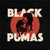 Black Pumas by Black Pumas album lyrics
