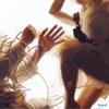 Animal by LUMP, Laura Marling & Mike Lindsay album lyrics
