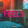 Feels (feat. Chris Brown) - Single album lyrics, reviews, download