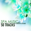 Spa Music Collection - 50 Tracks of Soothing Sounds of Nature for Wellness Centers and Hotel Lounge album lyrics, reviews, download