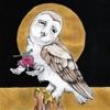 Farewell Transmission/The Dark Don't Hide It - Single album lyrics, reviews, download