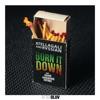 Burn It Down (feat. Fuego, Konshens & Satori) - Single album lyrics, reviews, download