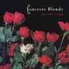 Joey by Concrete Blonde song lyrics