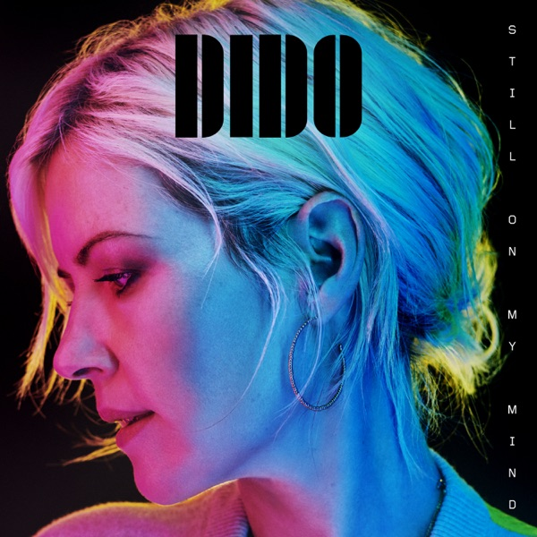 Still on My Mind by Dido album reviews, ratings, credits