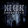 Sasquatch - Single album lyrics, reviews, download
