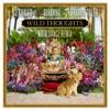 Wild Thoughts (feat. Rihanna & Bryson Tiller) [NOTD Dance Remix] - Single album lyrics, reviews, download