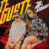 Te Gusté - Single album lyrics, reviews, download