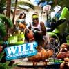 Wilt Chamberlain album lyrics, reviews, download