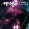 Sound of White Noise (Deluxe Edition) album lyrics, reviews, download