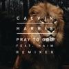 Pray to God (feat. HAIM) [Remixes] - Single album lyrics, reviews, download