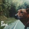 Boys (feat. Michael Libramento, Andrew Costantino & Ryan Lassiter) - Single album lyrics, reviews, download