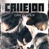 Live in Köln album lyrics, reviews, download