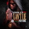 Can't Lie (feat. Future) - Single album lyrics, reviews, download