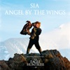 Angel by the Wings - Single album lyrics, reviews, download